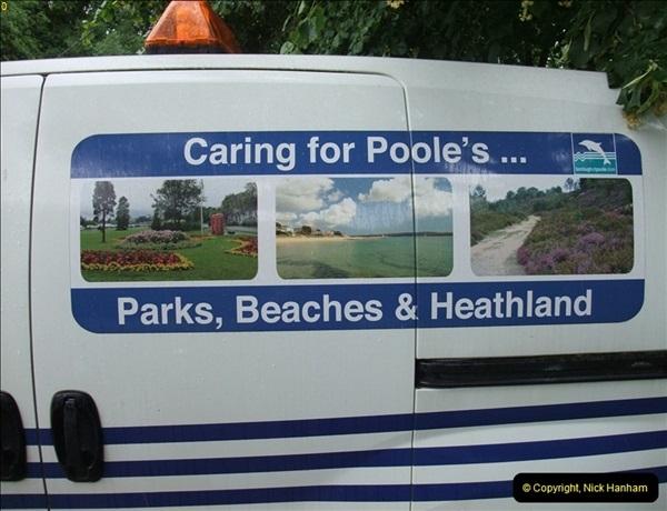 2012-07-12 Upton Country Park, Poole, Dorset.  (2)267