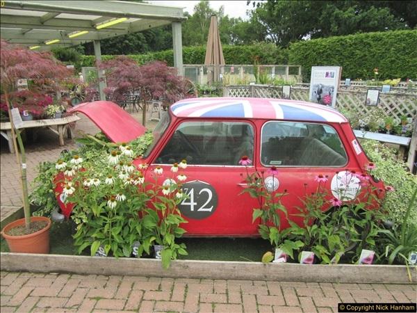 2018-07-11 Stewart's Garden Centre, Broomhill, Wimborne, Dorset.  (2)186