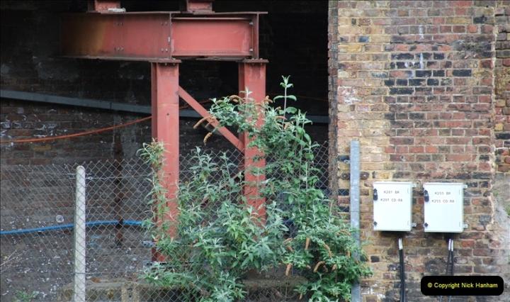 2019-04-29 London Kings X. (58) Nice garden at the X. 136