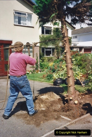 2000 Miscellaneous. (176) Garden improvements with my neighbour. 177