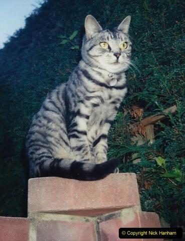 1997 Cleo. (5) 005