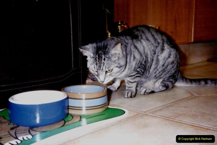 1997 Cleo. (6) 006