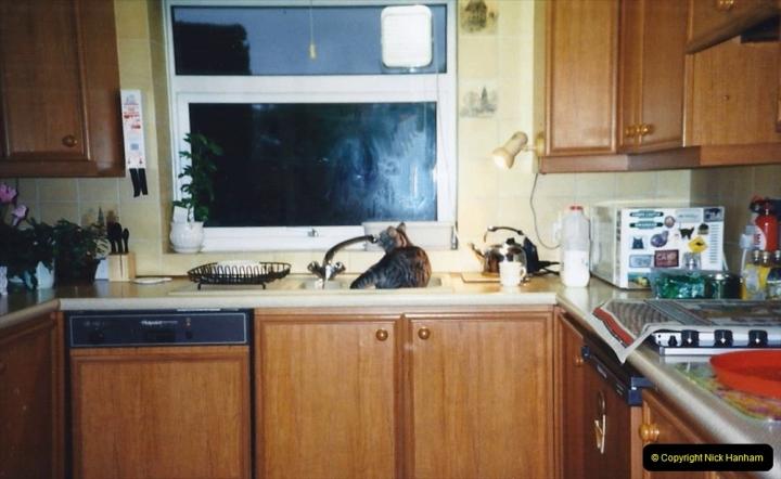 1998 Cleo. (30) In the sink again.030