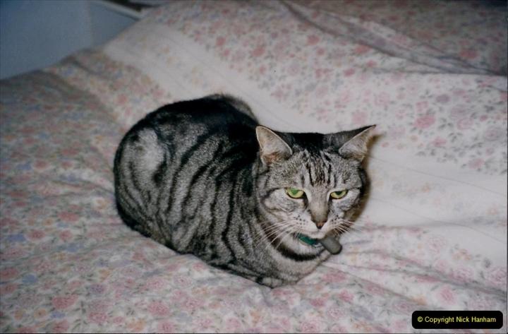 2000 Cleo. (61)061