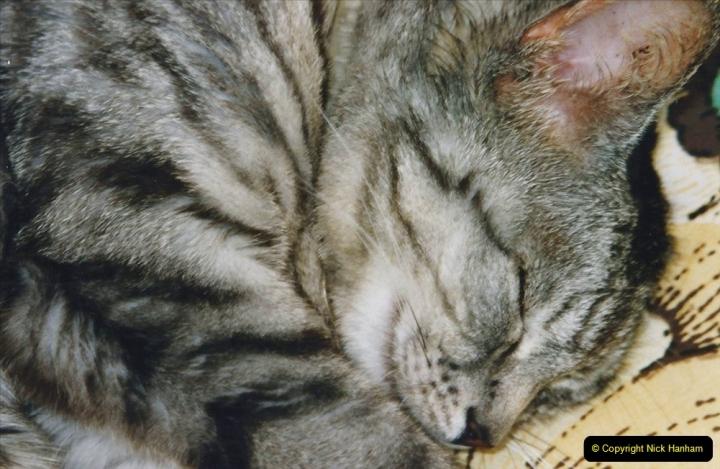 2001 Cleo. (66) 066