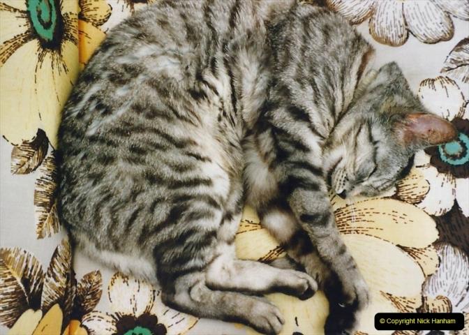 2001 Cleo. (67) 067
