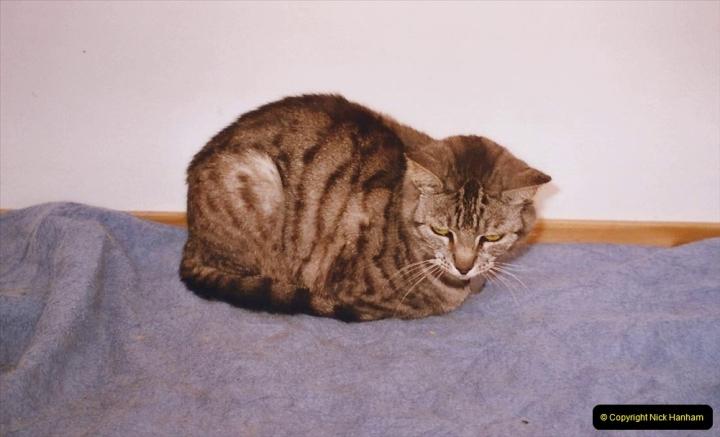 2002 Cleo. (84)084