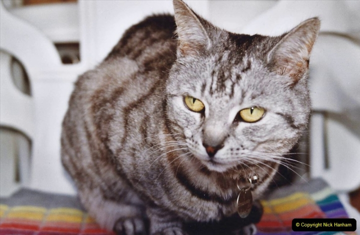 2004 Cleo. (105) 105