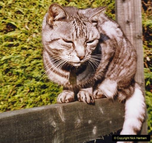 2004 Cleo. (115)115