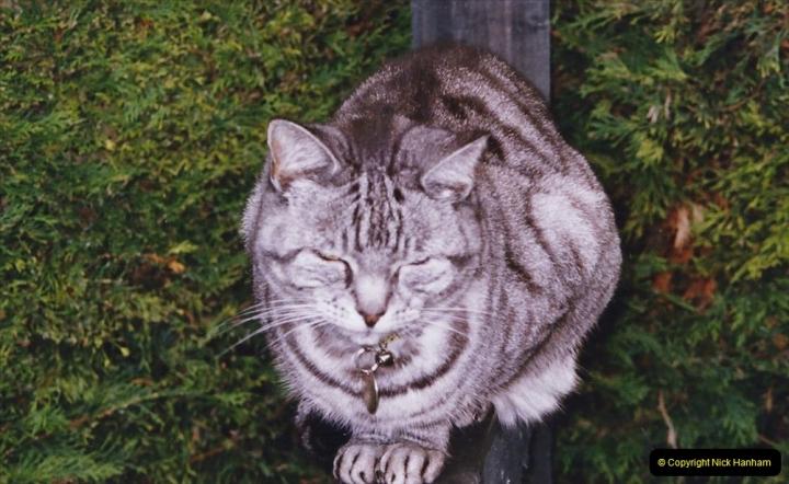 2004 Cleo. (120)120