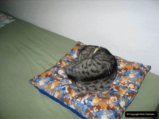 2005 to 2010 Cleo. (147) 147