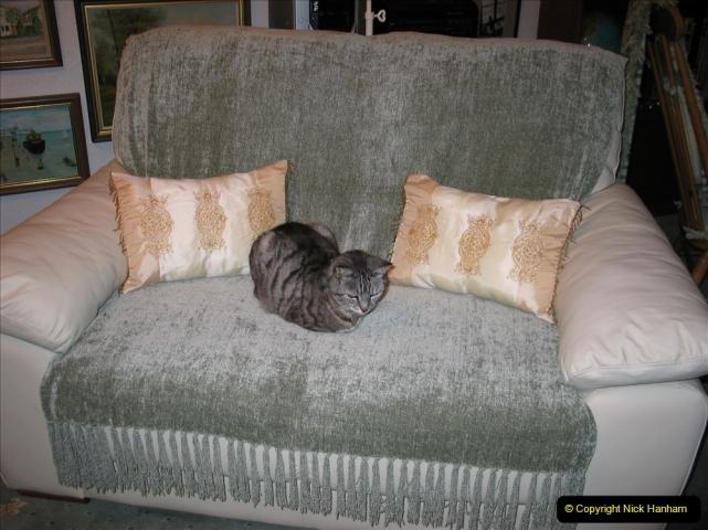 2005 to 2010 Cleo. (156) 156