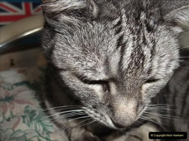 2005 to 2010 Cleo. (169) 169