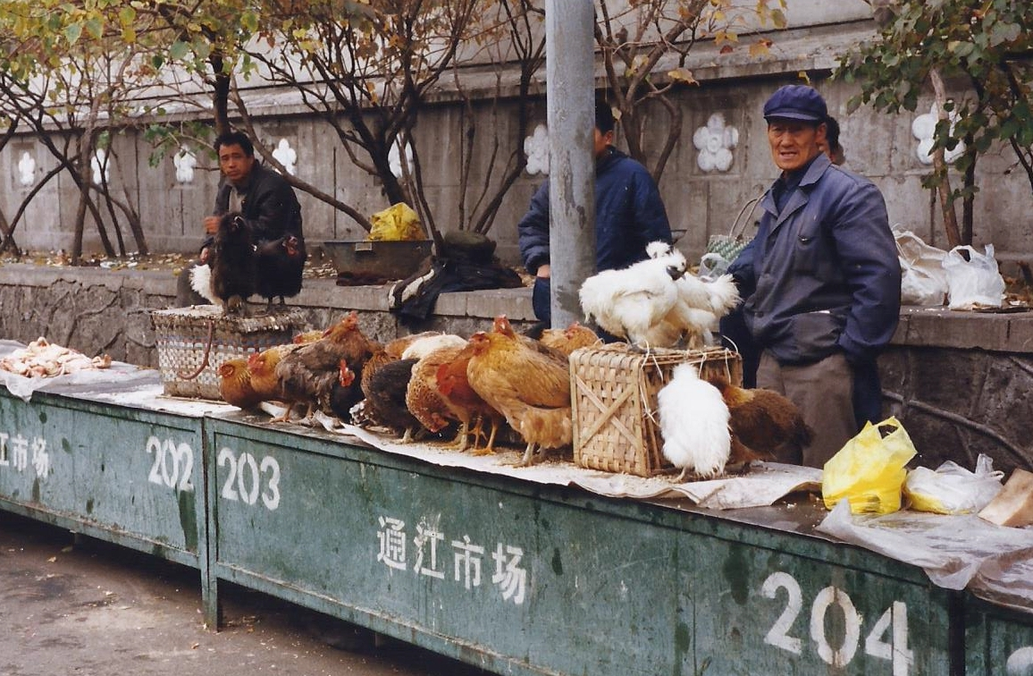 China 1999 October Number 1. (29) Harbin local market.