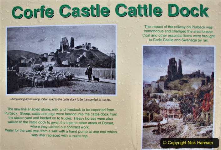 2020-01-17 Track renewal Cowpat Crossing to just past Dickers Crossing. (6) Corfe Castle. 6