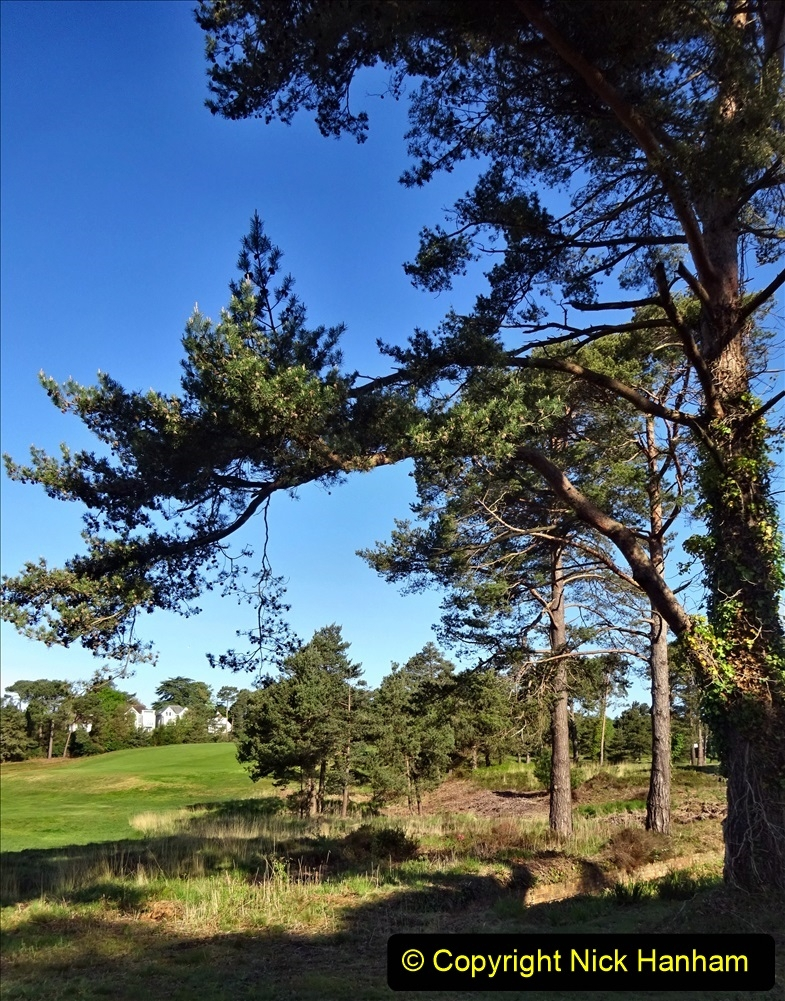 2020-05-04 Covid 19 walk Parkstone Golf Club Poole, Dorset.  (41) 041