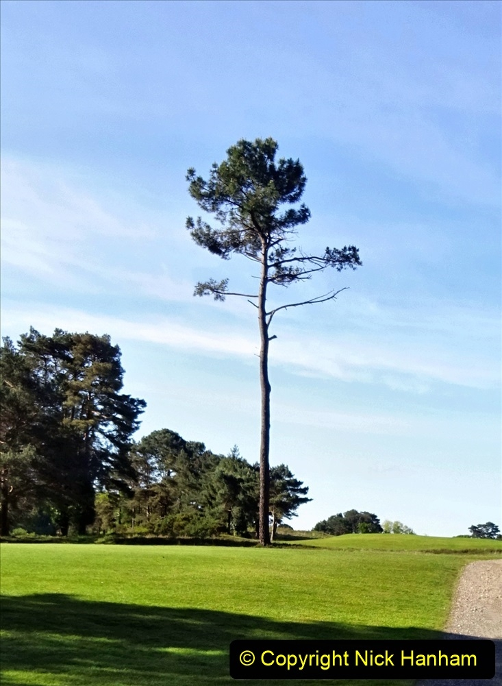 2020-05-04 Covid 19 walk Parkstone Golf Club Poole, Dorset.  (53) 053