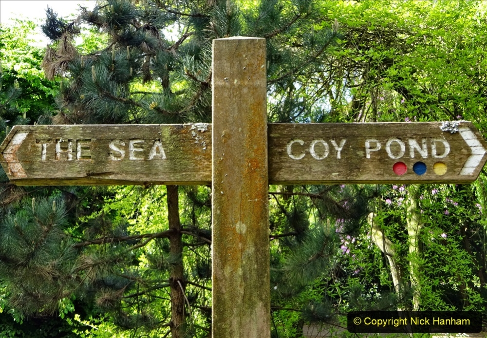 2020-05-19 Covid 19 Walk Coypond Lake, Branksome to Bournemouth Pier and return. (64) 064