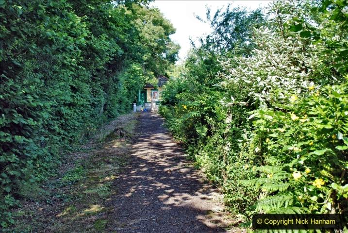 2020-06-23 Swanage Railway still in lockdown. (86) Harmans Cross. 086