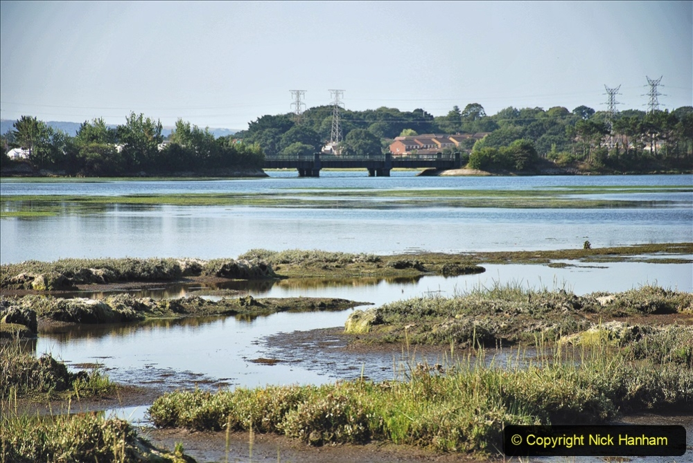 2020-07-31 Covid 19 Walk Poole Inner Harbour to Upton Country Park and return. (36)