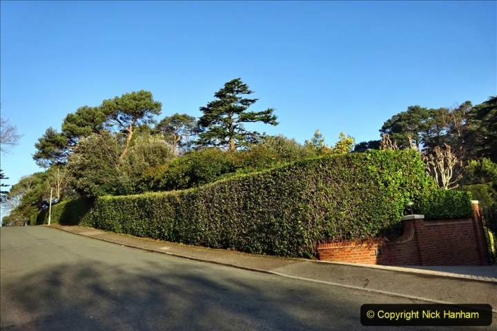 2021-02-28 Local Covid 19 Walk around the Evening Hill area of Poole. (8) 008