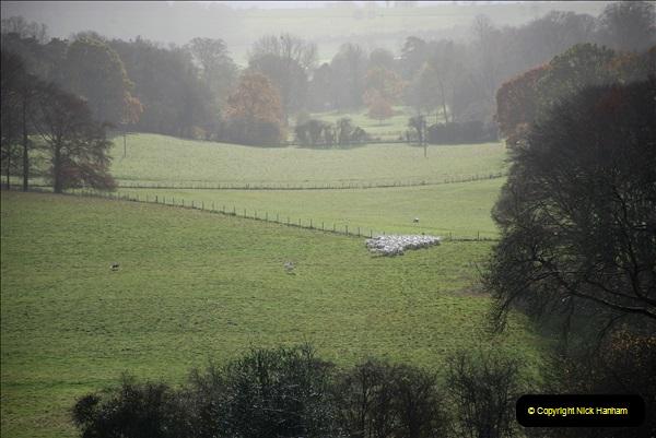 2018-11-12 Hinton Ampner (NT) Hampshire.  (26)26