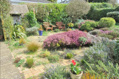 2018-04-14 A Poole Garden in Spring.  (2)002