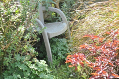 2018-04-14 A Poole Garden in Spring.  (32)032