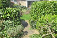 2018-04-14 A Poole Garden in Spring.  (50)050