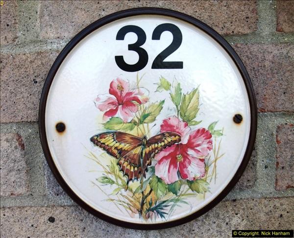 2015-06-07 A Poole Garden June 2015. (1)01