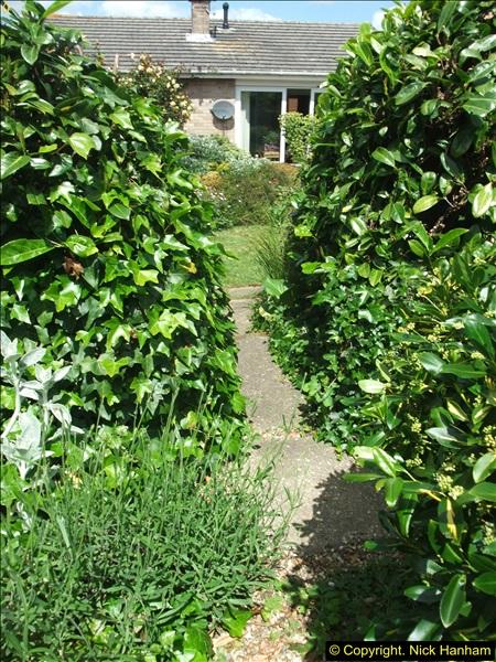 2015-06-07 A Poole Garden June 2015. (51)51