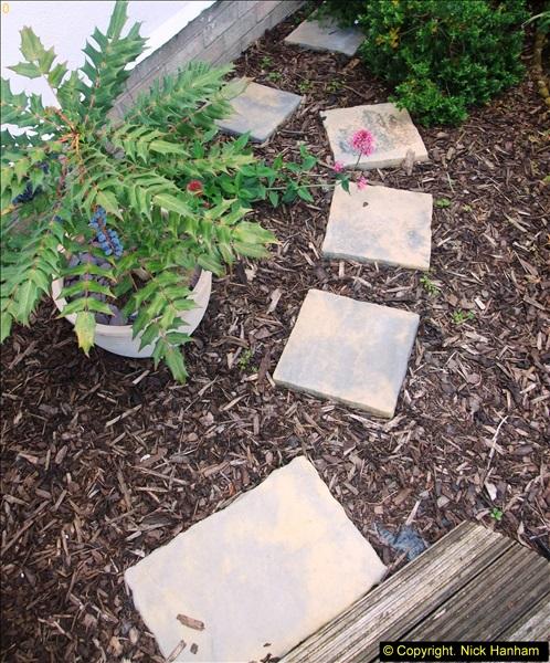 2015-06-07 A Poole Garden June 2015. (6)06