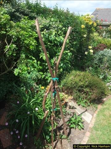 2015-06-07 A Poole Garden June 2015. (52)52