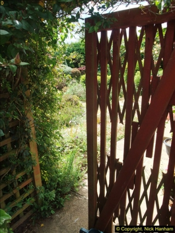 2015-06-07 A Poole Garden June 2015. (58)58