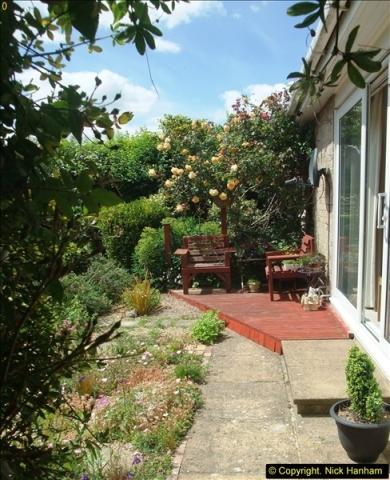 2015-06-07 A Poole Garden June 2015. (59)59