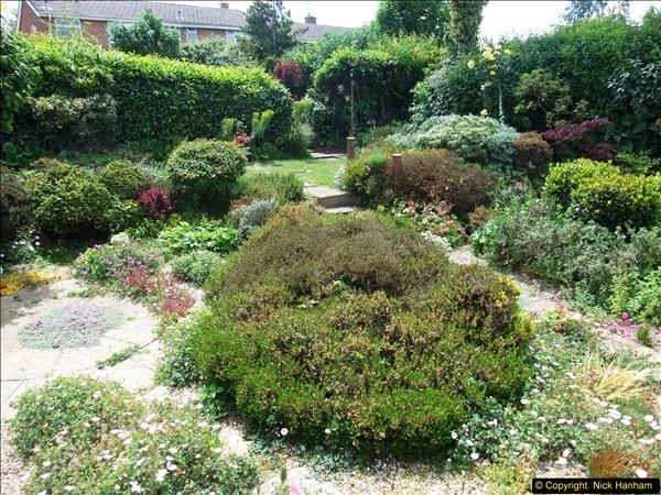 2015-06-07 A Poole Garden June 2015. (64)64