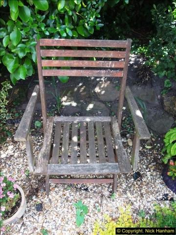 2015-06-07 A Poole Garden June 2015. (66)66