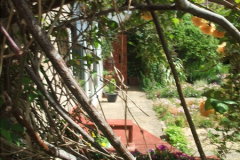 2015-06-07 A Poole Garden June 2015. (32)32