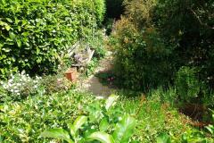 2015-06-07 A Poole Garden June 2015. (45)45