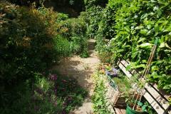2015-06-07 A Poole Garden June 2015. (48)48