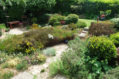 2015-06-07 A Poole Garden June 2015. (63)63