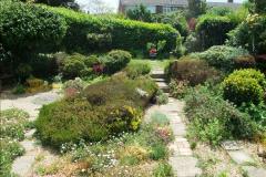 2015-06-07 A Poole Garden June 2015. (70)70