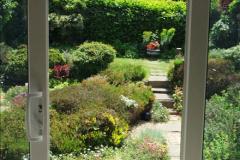 2015-06-07 A Poole Garden June 2015. (72)72