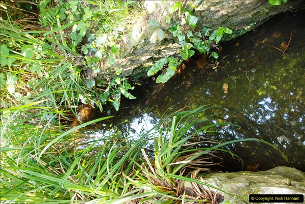 2016-07-14 A country and seaside walk in Poole, Dorset.  (23)023