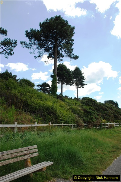 2016-07-14 A country and seaside walk in Poole, Dorset.  (74)074