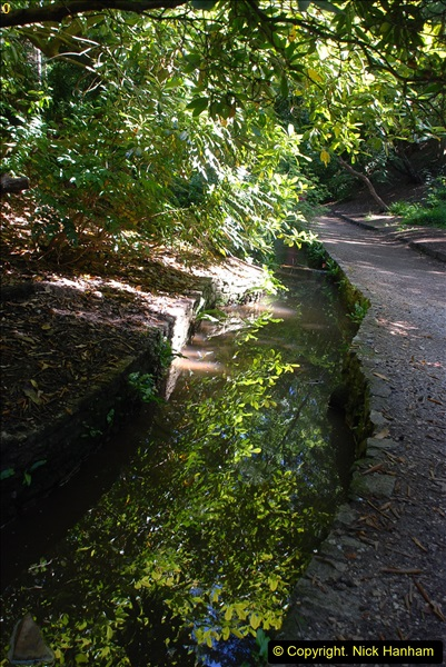 2016-07-20 A continuation of the Poole country to seaside and return walk. (67a) (32)131