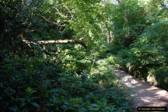 2016-07-20 A continuation of the Poole country to seaside and return walk. (67a) (71)170