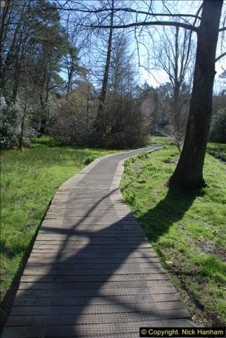 2016-03-25 A Spring walk.  (11)011