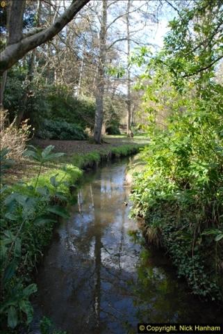 2016-03-25 A Spring walk.  (236)236