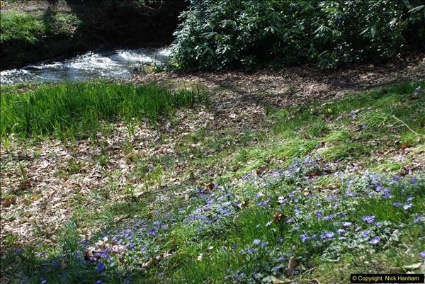 2016-03-25 A Spring walk.  (240)240